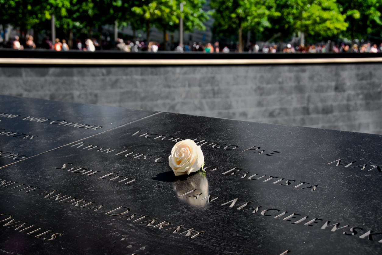 White rose that has been laid upon the memorial for the September 11, 2001 terrorist attacks